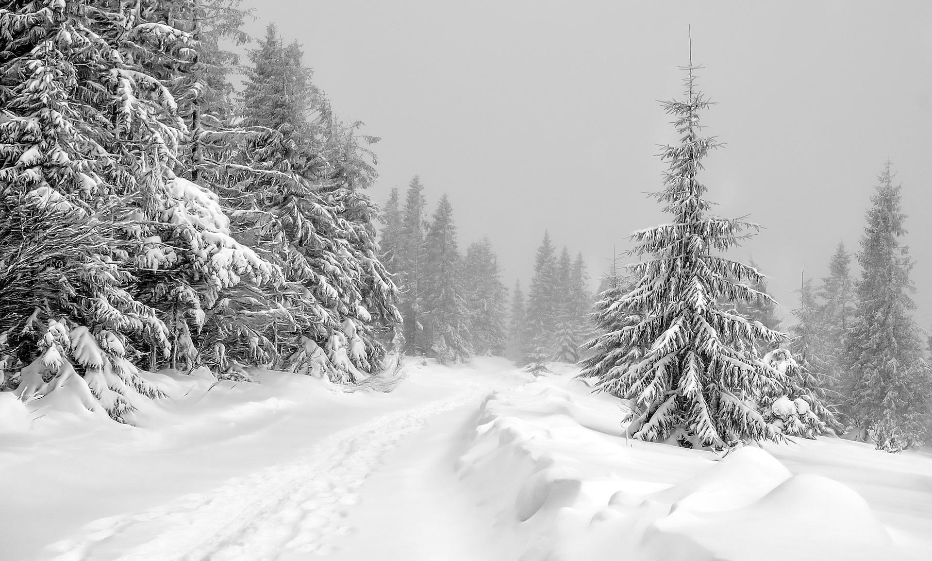 Kiedy są ferie zimowe 2021